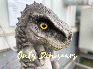Sweet Grey Baby T-Rex Dino Animatronic Puppet