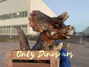 Crate Baby Triceratops Dino Puppet for Sale