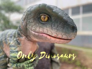 Cute Green Baby Raptor Dino Puppet for Party