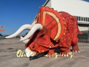 Double-person Triceratops Dinosaur Costume with Red Skin